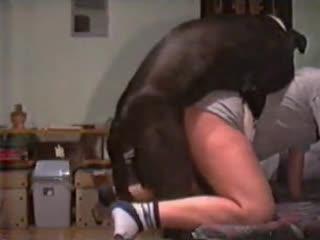 兽兽系列女子和狗上演兽交兽兽伦性交,不要错过,精彩片段